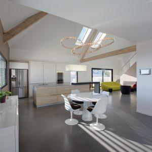 Construction collectif toiture à quatre pans - cuisine, salle à manger et salon