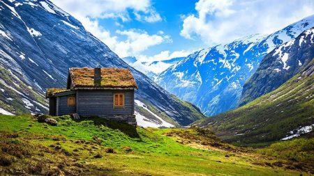maison-scandinavie-toit-vegetal