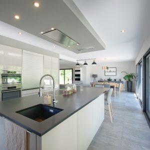 Construction à toiture audacieuse - cuisine et salle à manger