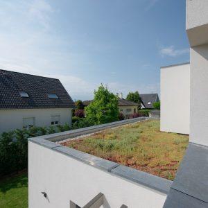 Construction à toit plat - balcon et toit végétalisé